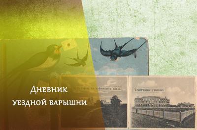Дневник уездной барышни.